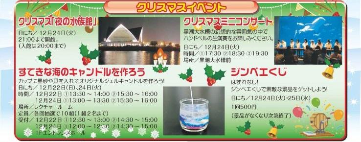 かごしま水族館は12月24日、クリスマスミニコンサートなど夜だけのイベントも開催 イメージ画像