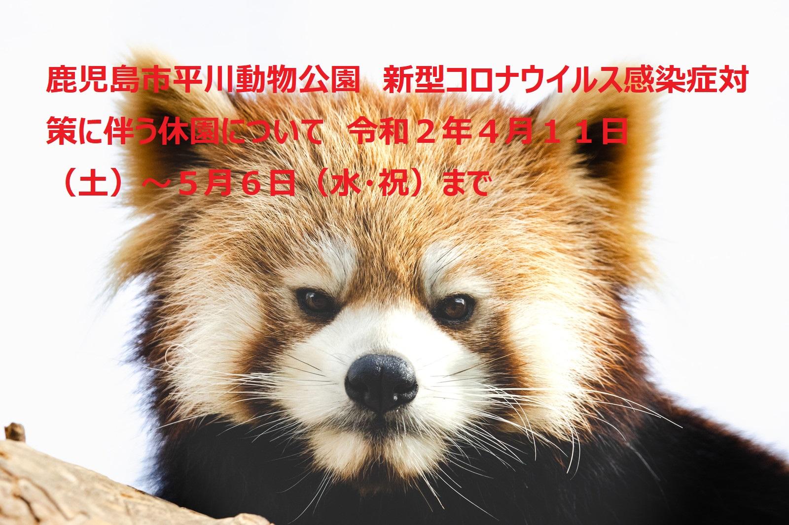 鹿児島市平川動物公園 新型コロナウイルス感染症対策に伴う休園について 令和2年4月11日(土)~5月6日(水・祝)まで イメージ画像