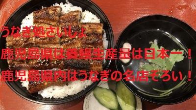 うなぎ処さいしょ 鹿児島県は養鰻生産量は日本一! 鹿児島県内はうなぎの名店ぞろい!? イメージ画像