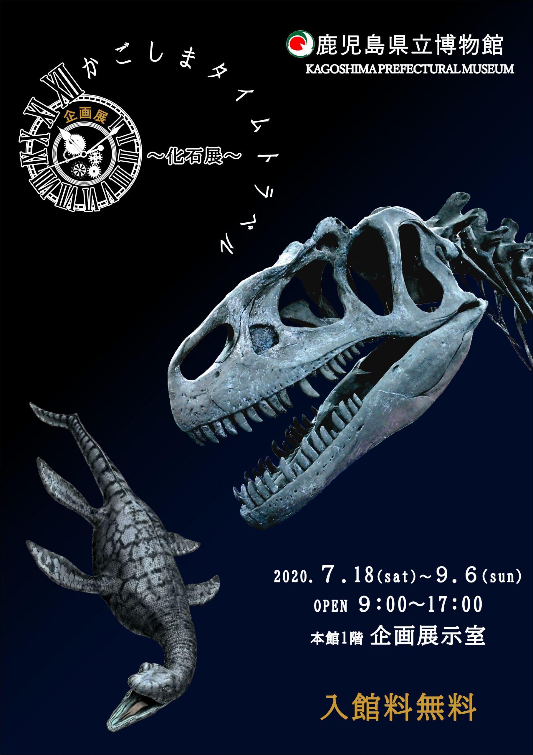 夏休みに行くべき場所!鹿児島博物館で企画展「かごしまタイムトラベル~化石展~」令和2年7月18日(土曜日)~9月6日(日曜日)を見て、獅子島に行くのはどうですか? イメージ画像