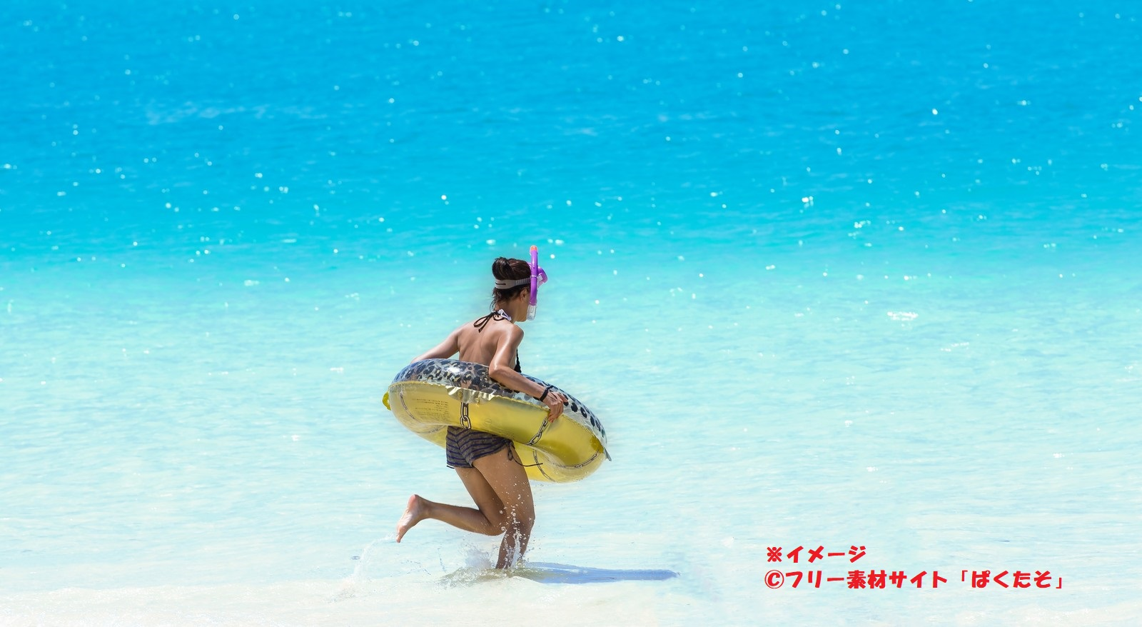 自然レクリエーション村(熊野海水浴場)-離島地区- 種子島 イメージ画像