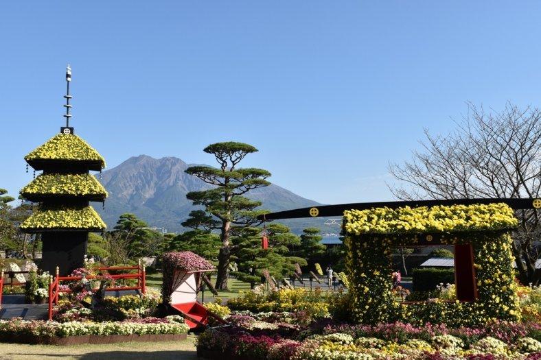 鹿児島の秋の風物詩 仙巌園 開催日令和2年11月1日(日)~11月23日(月) イメージ画像