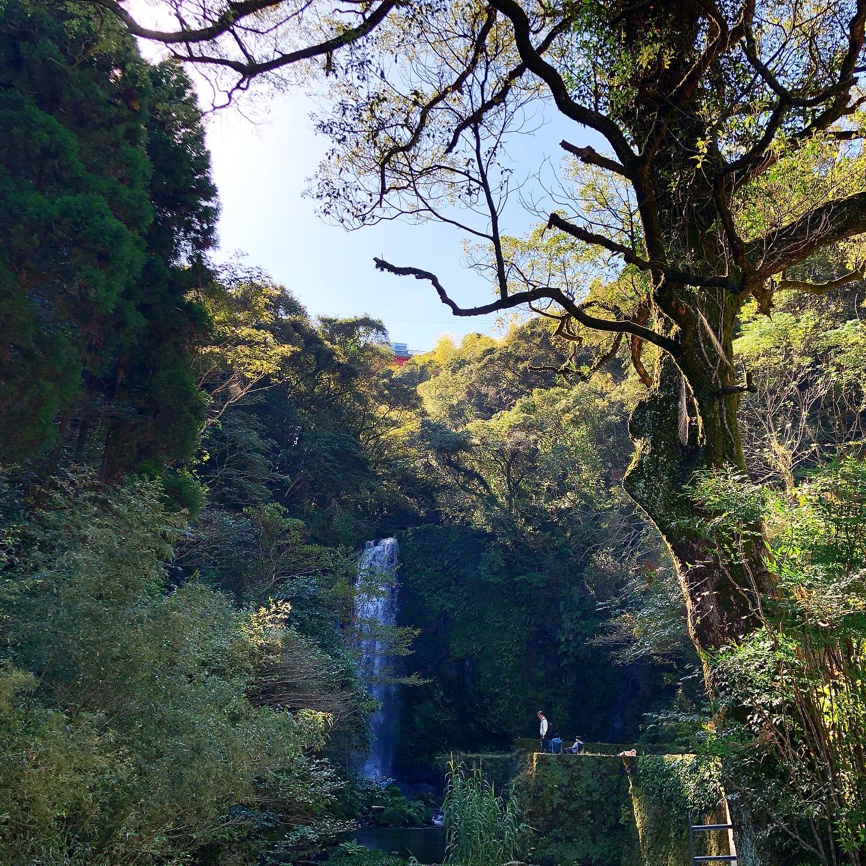 滝ノ下大滝公園 -鹿児島市のかごしま自然百選- イメージ画像