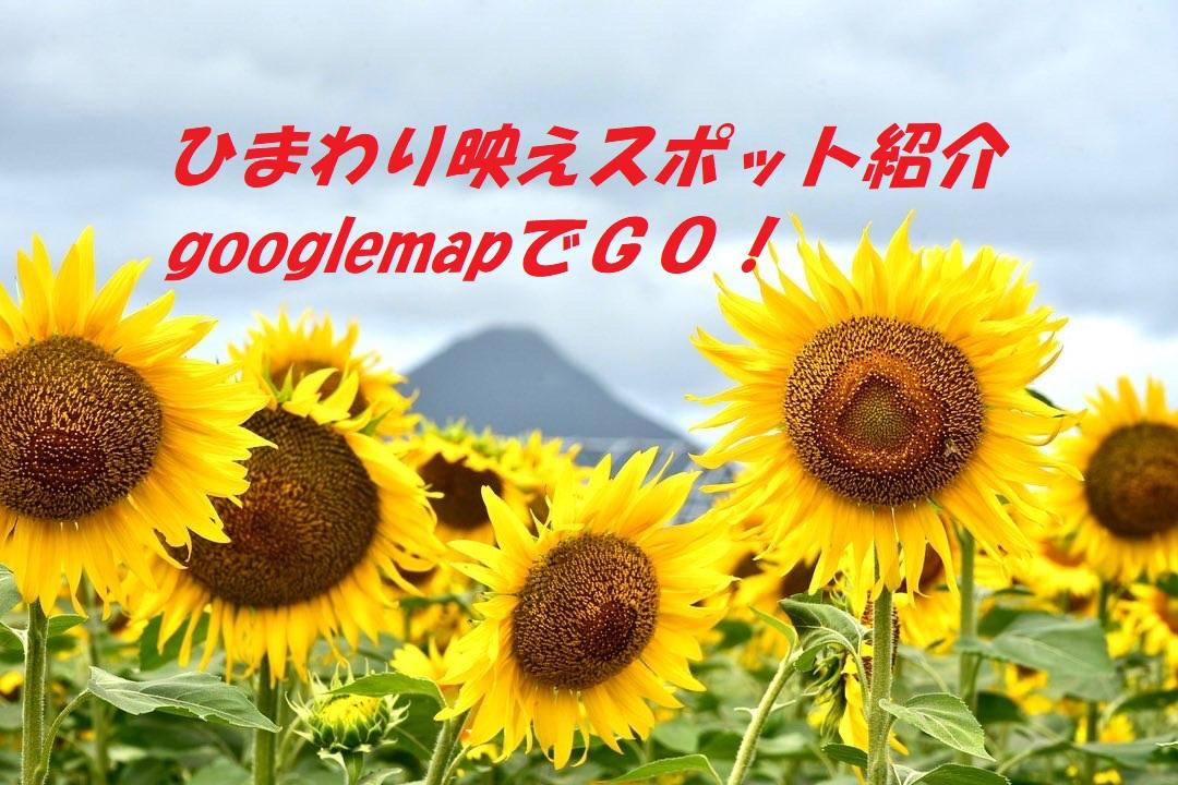 鹿児島ひまわり映えスポット! 開聞岳周辺と長島町 イメージ画像